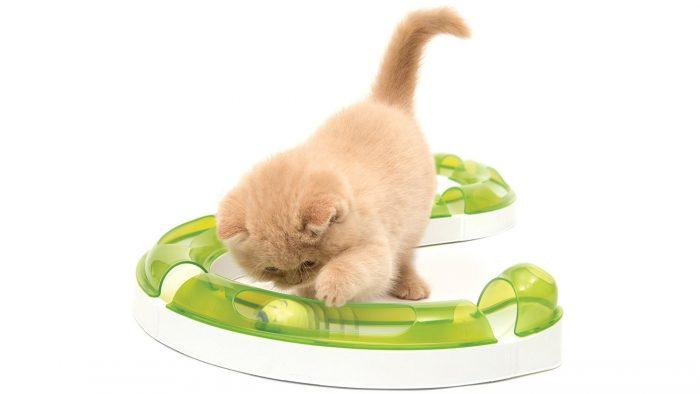 игры для котят и кошек