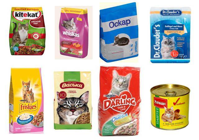 Недорогие виды кормов для кошек