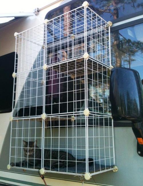 Сетка на окно для кошек своими руками 13