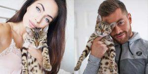 Бенгальские котята фото (8)