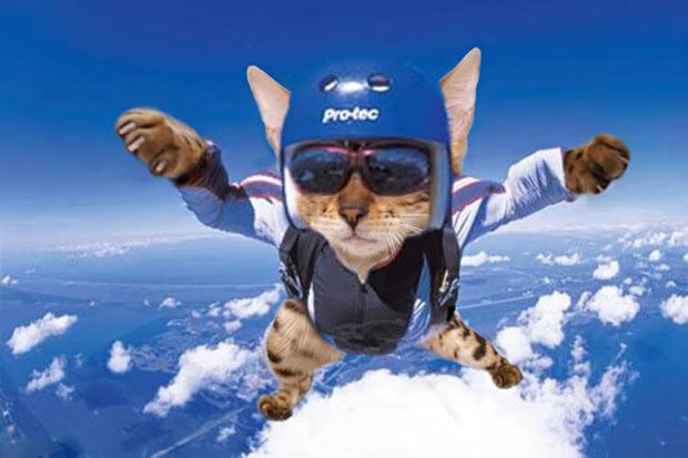 simba-skydiving-sports