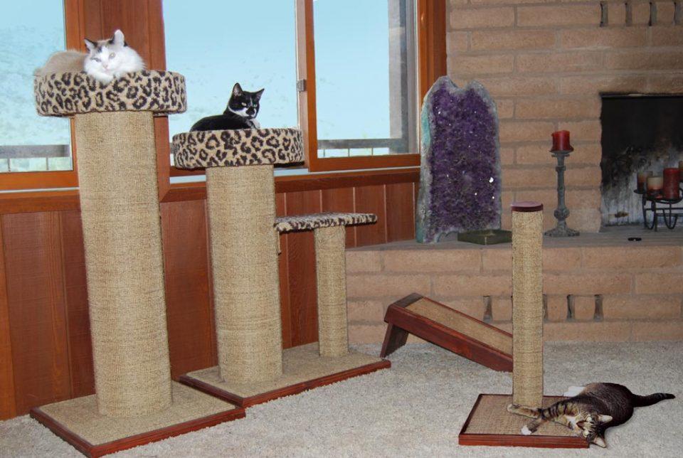 Какую лучше выбрать когтеточку для кошки