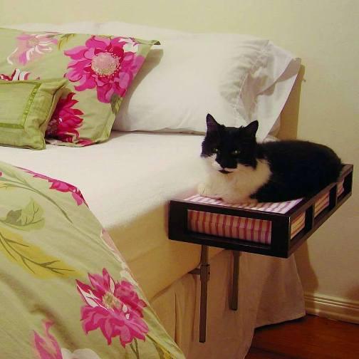 домик для кошки рядом с хозяйской кроватью