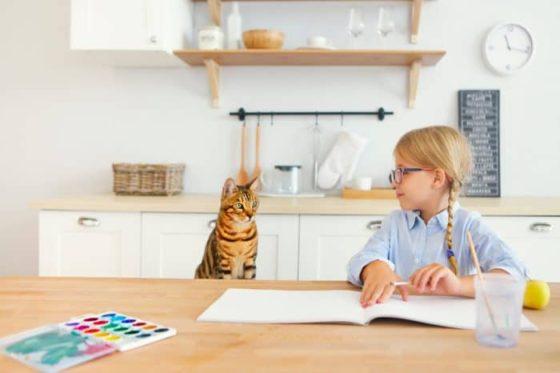 Бенгальская кошка ладит с детьми?