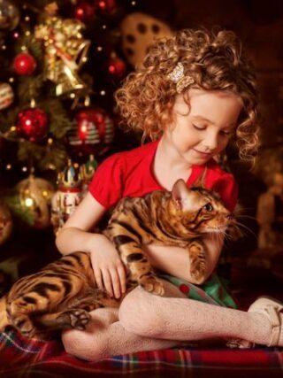 Подойдут ли бенгальские кошки для детей?