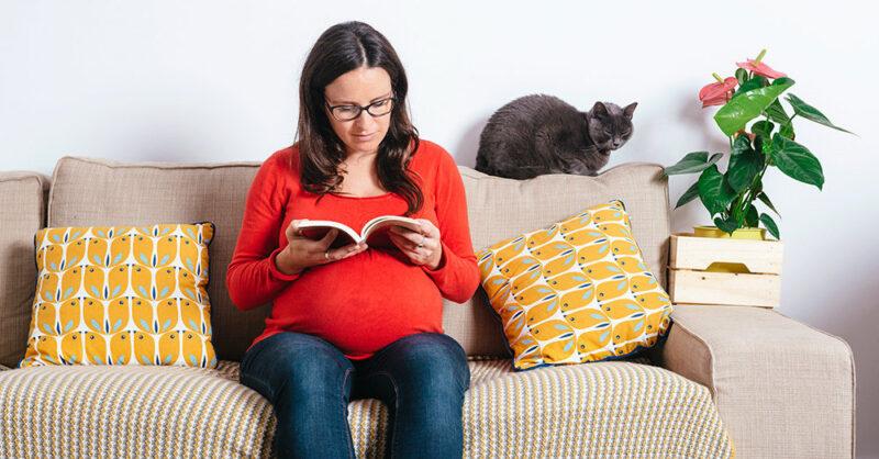 Опасно ли жить с кошкой во время беременности?