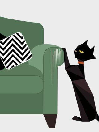 Как не дать кошке поцарапать вашу мебель